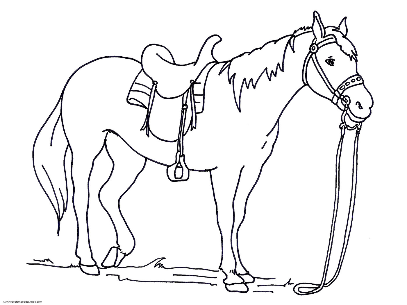 Printable Horse Jumping Coloring Pages With Show Horse Coloring Pages Coloring Pages For Kids Coloring