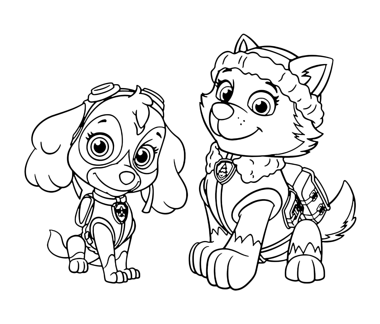 everest paw patrol coloring lesson  kids coloring page