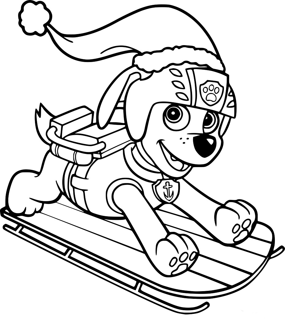 Zuma Paw Patrol Coloring Lesson | Kids Coloring Page ...